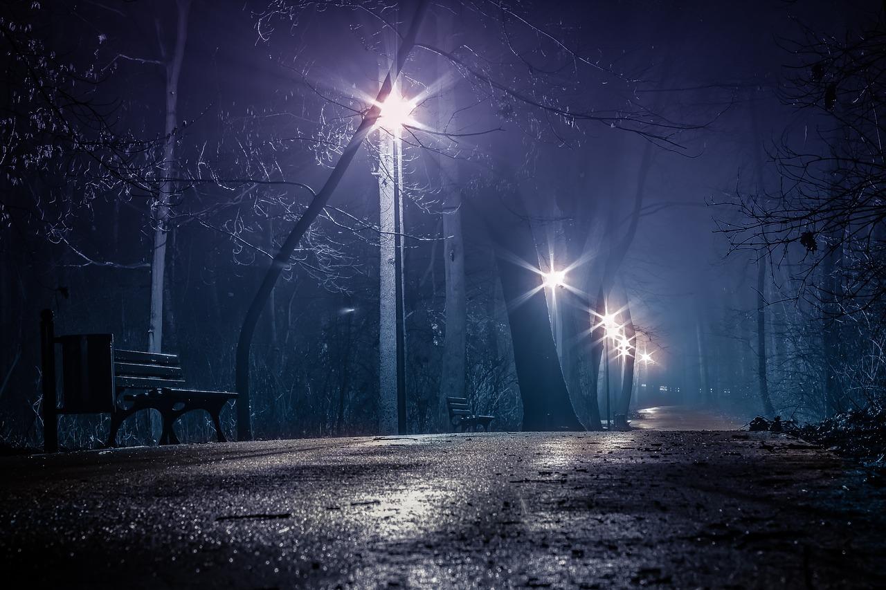 夜 道路 ベンチ