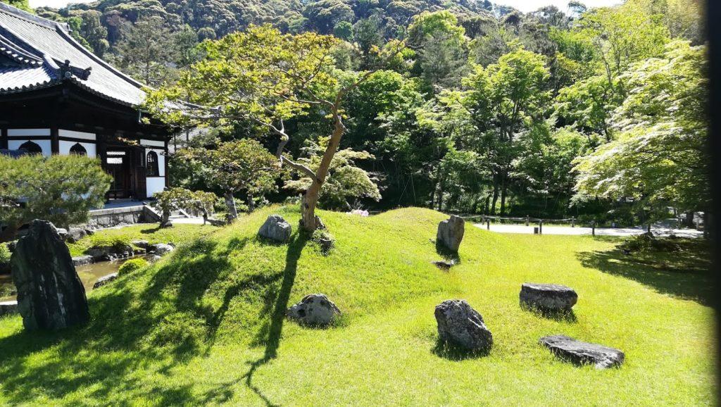 高台寺 緑
