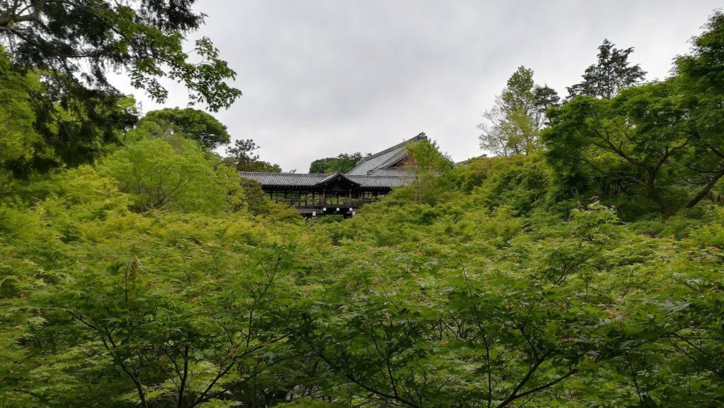 東福寺 外観