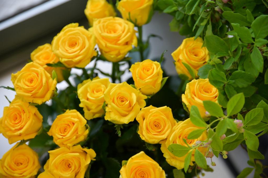 生け花用の花